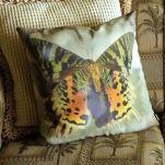 Tiger Swallowtail Pillow