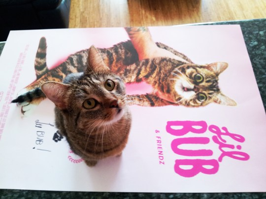 Bub sent home an autographed, life-size poster just for Crepes.