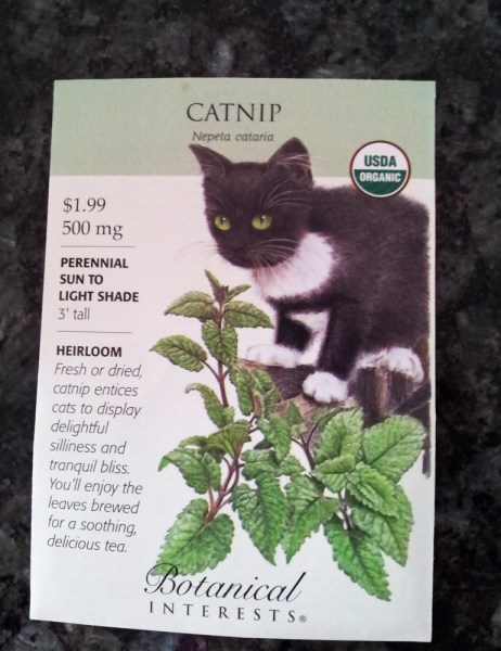 This cat is SERIOUS about you not touching his nip.