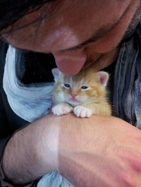 A grumpy little kitten who was rescued along with his mama. This kitten does not like kisses.
