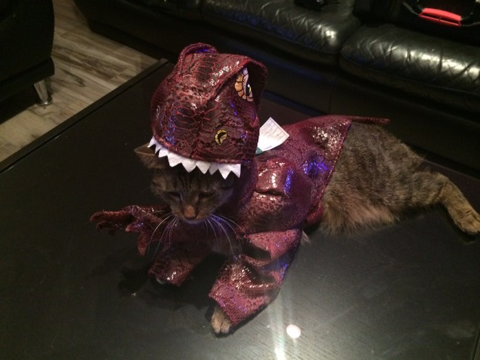 I am a reluctant dinosaur.