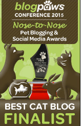 blogpaws finalist badge 2015