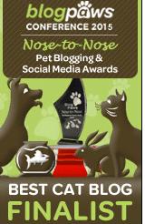 blogpaws finalist badge 2015