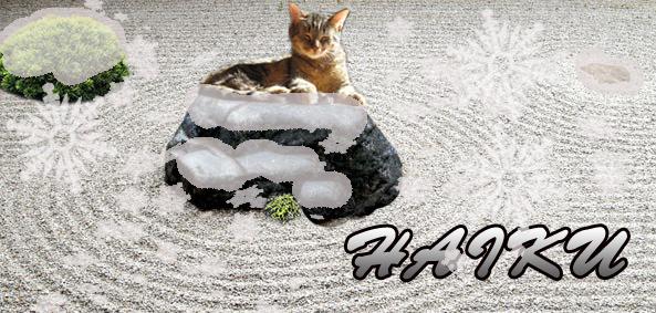 zen garden rock snow