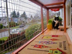 cat enclosure mesh for your catio