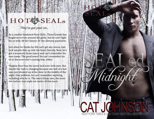 SEALed at Midnight Hot SEALs