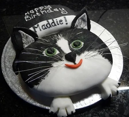 cat birthday cake to match pet's photo