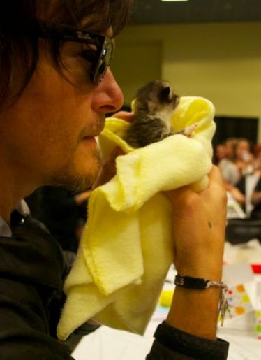 Norman Reedus with baby kitty