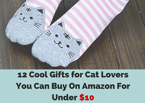 Gifts for cat lovers on Amazon