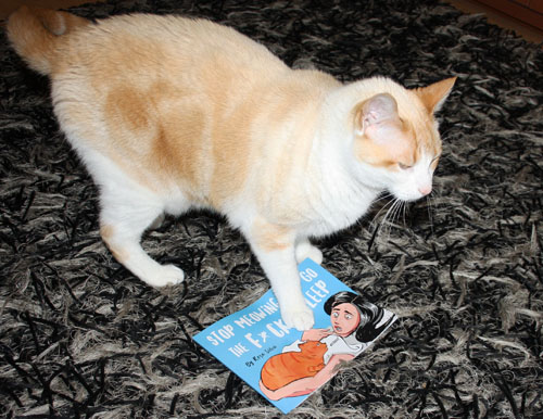 "Cat stepping on book ""Stop Meowing and Go the F*ck to Sleep"""