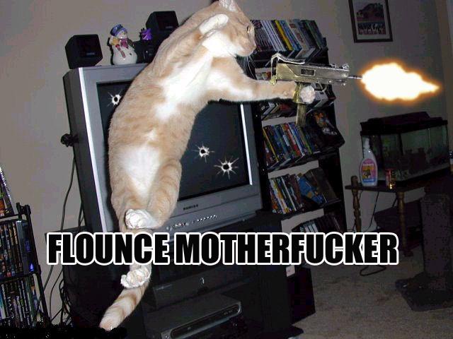 cat jumping up firing a gun