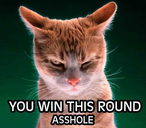 you win this round lol cat macro