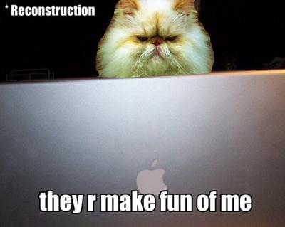 they r make fun of me funny lol cat macro