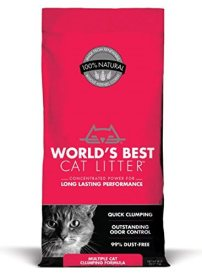 The Best Cat Litter for Multiple Cats
