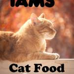 IAMS Cat Food Review