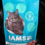 IAMS Cat Food Review