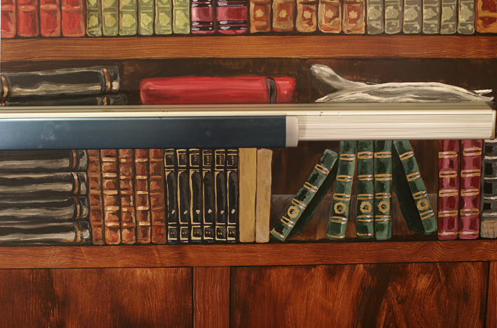 Trompe L'oeil Bookshelf (Detail of books)
