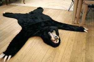 BearRug18