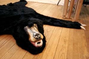 BearRug20