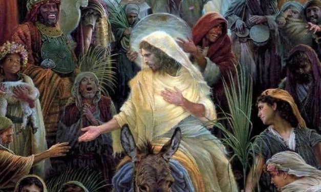 Coincidencias en los Evangelios
