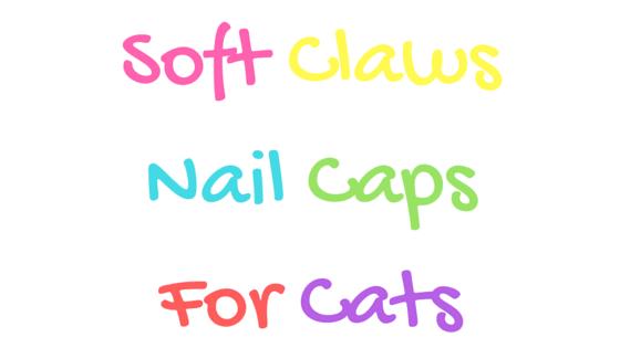 feline soft claw