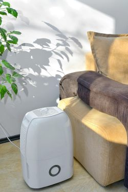 Portable dehumidifier for flea control