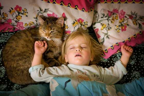 sleeping with cat