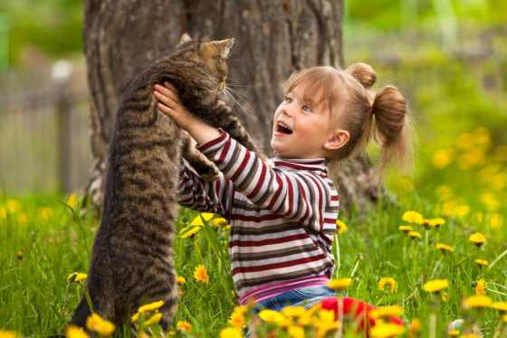 girl and cat playing