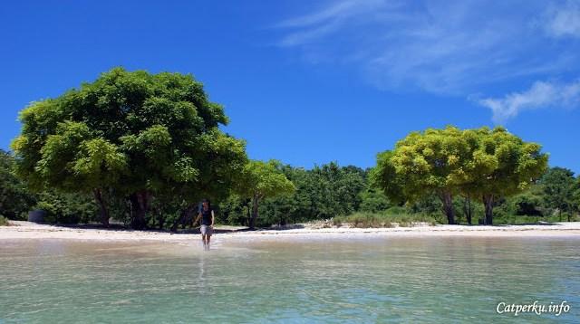 Yang takut dengan panas, jangan khawatir juga sih~~ di tepi pantai tangsi banyak pohon yang bisa digunakan untuk mengamankan diri dari kejamnya panas matahari Pulau Lombok. Malah, kadang - kadang sekedar berteduh di bawah pohon sambil mendengarkan suara ombak itu sangat menyenangkan :)