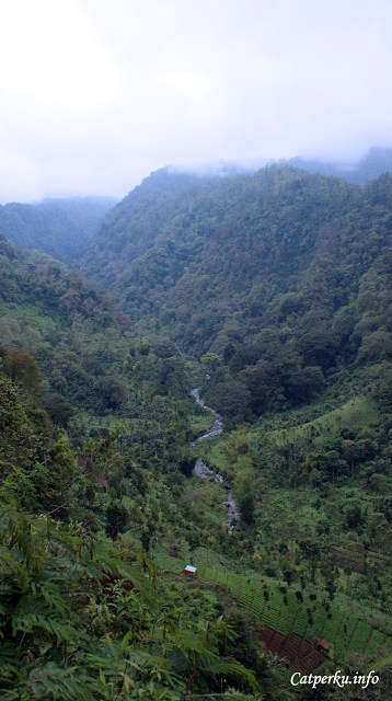 Lembah yang menghijau seperti ini bisa ditemukan jika menuju ke kawasan Taman Nasional Bromo Tengger Semeru dari arah Tumpang, Malang, melewati desa Ngadas