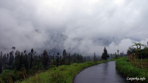 Menuju Gunung Bromo itu bagaikan perjalanan menuju negeri kabut loh~~
