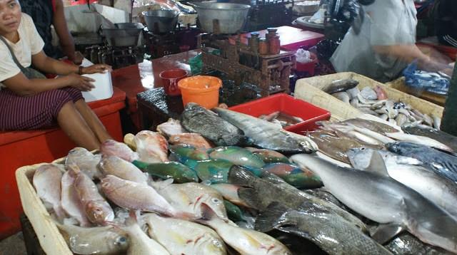 Di Pasar Ikan Segar Kedonganan ini terdapat banyak sekali ikan yang bisa dibeli oleh pengunjung.