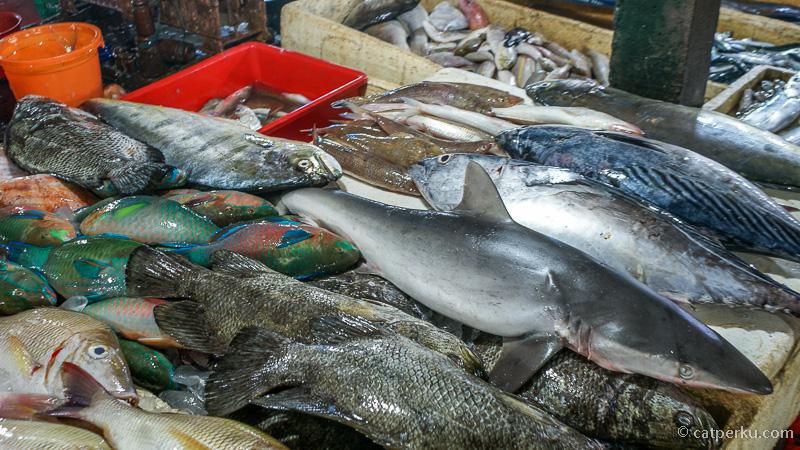 Ada berbagai jenis ikan di Pasar Ikan Kedonganan
