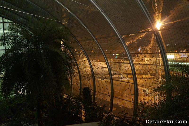 Ada kebun disebelah tempat parkir pesawat! Bener - bener go green ini!