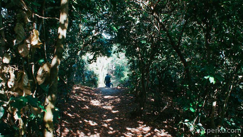 Ada satu sudut di Pura Uluwatu, yang harus melewati jalan seperti ini.