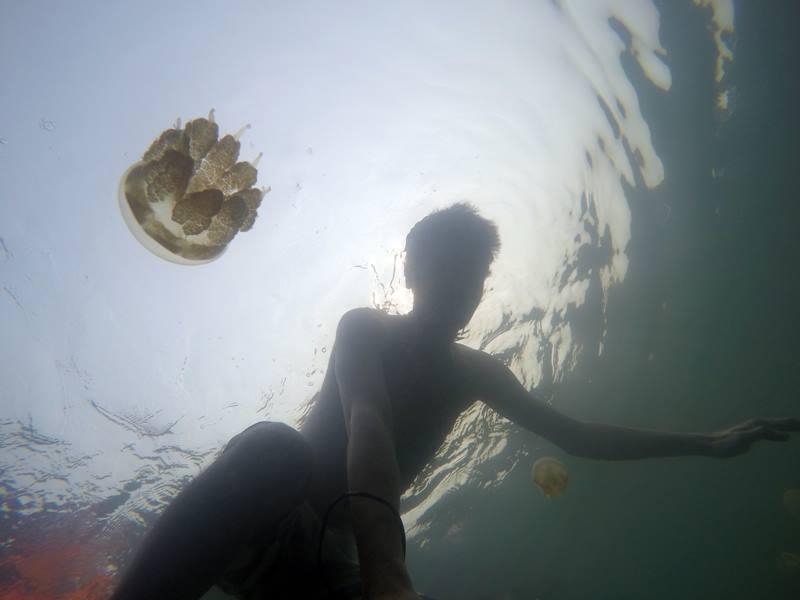 Akhirnya bisa berenang bareng ubur-ubur!