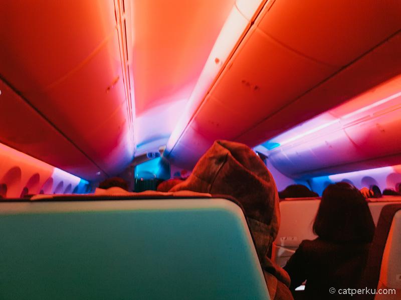 Bagian atas pesawat Boeing 787 Dreamliner bisa warna warni kayak gini!
