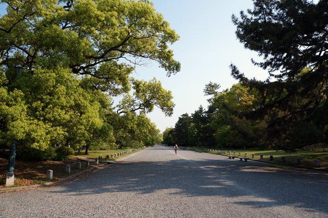 Banyak pepohonan yang rindang, jadi pagi hari suasananya begitu segar