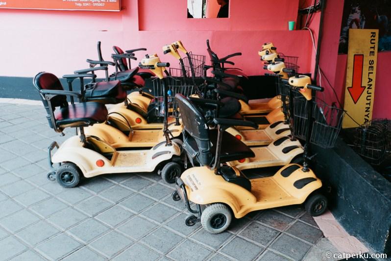 Bisa sewa yang namanya E-bike kalau malas jalan kaki keliling kebun binatang.