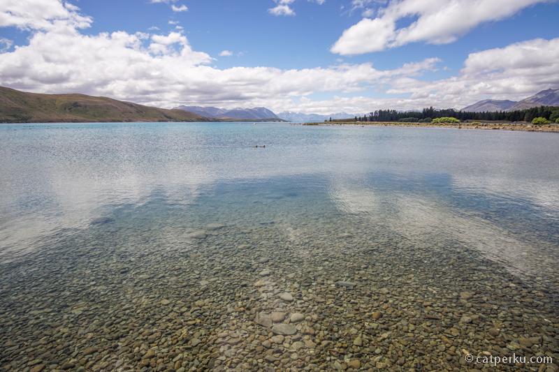 Danau Tekapo ini bening banget gilak!