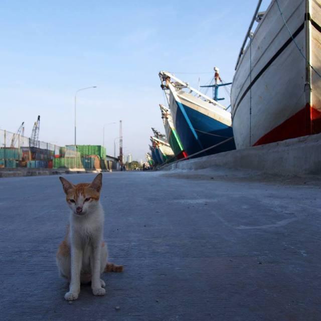Empus preman Pelabuhan Sunda Kelapa nih!