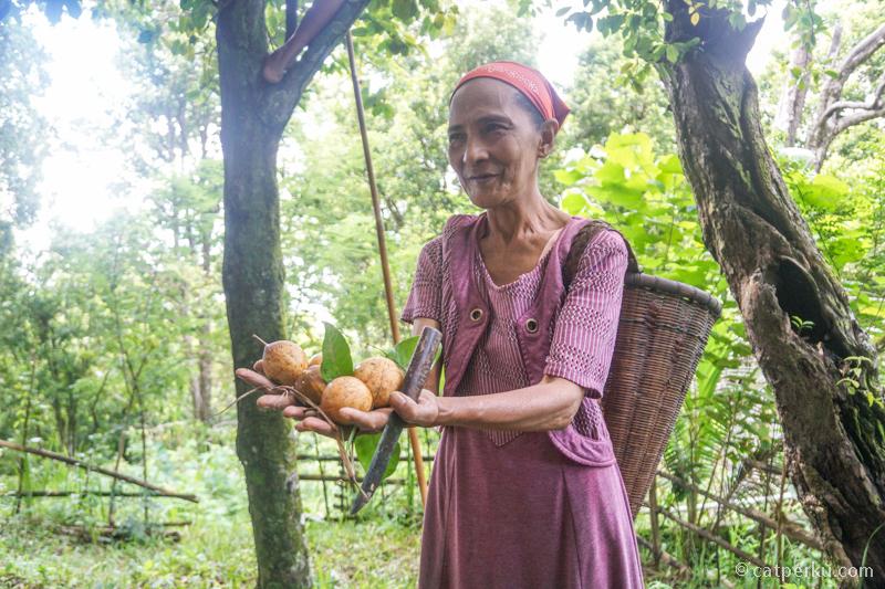 Ibu ini sedang mencari Buah Pala di Desa Marikurubu.