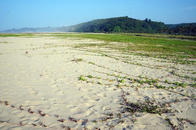 Kalau enggak dapat penginapan gegoleran di pasir pantai ciantir ini bisa juga kali :D. next time mau coba ah!