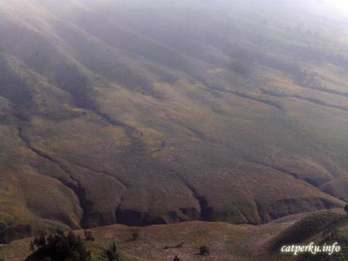 Mereka menyebutnya, bukit teletubies, Bromo Tengger Semeru National Park