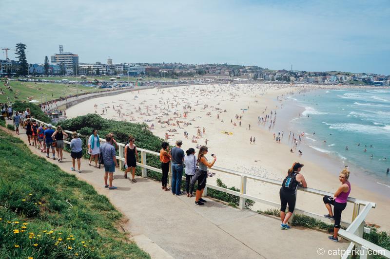 Main ke Sydney, ya harus mampir kesini!