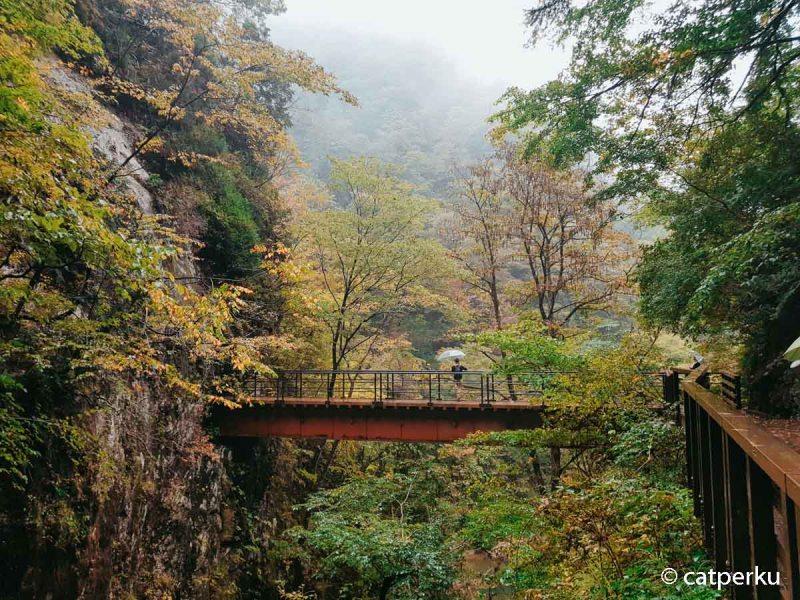Pemandangan lembah Dakigaeri dari Air Terjun.