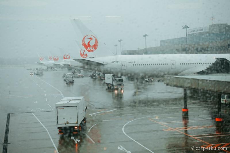 Pesawat Japan Airlines di Bandara Narita ketika sedang hujan.