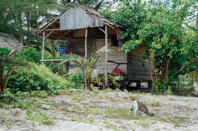 Salah satu cottage yang ada di Tailana