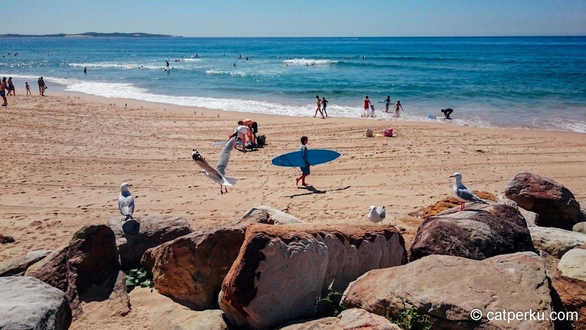 Salah satu surfing beachnya Sydney! Tapi adem sik airnya!