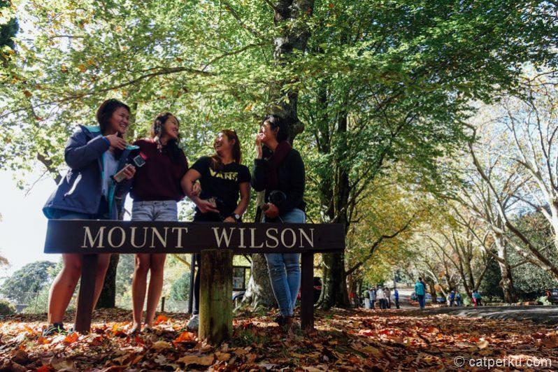 Selamat datang di Mount Wilson, foto dulu biar nggak dibilang hoax.
